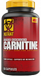Fit Foods Core Series L-Carnitine